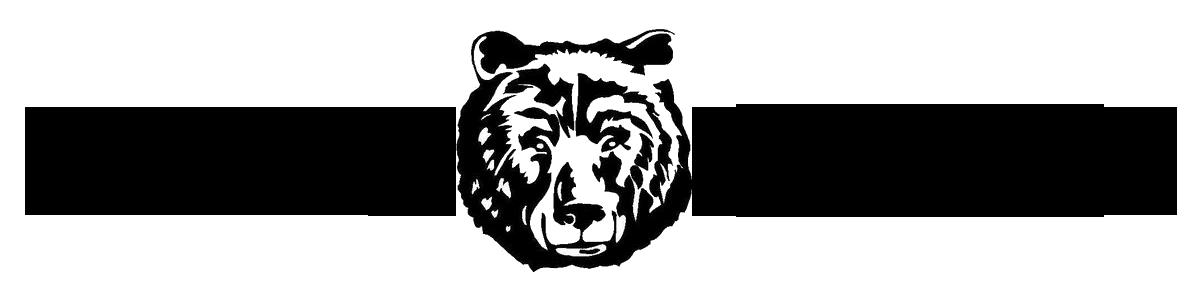 BearPoint